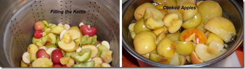 APPLES IN PROCESS2
