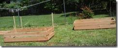 nola garden starts