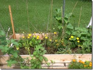 cote garden